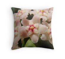 Hoya macro Throw Pillow