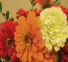 Zinnias by lillianhibiscus