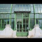 Greenhouse in the Vienna's park - View 1 by Roberta Angiolani