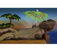 Lizard on holiday Photographic Print