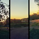 Sunset Triptych by Bryan Davidson