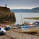 Clovelly Harbour by Andre Gascoigne