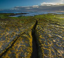 Mornington Peninsula Seascapes by Neil