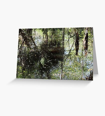 More Swamp Reflections Greeting Card