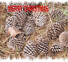 Pine-cone Christmas. by elphonline