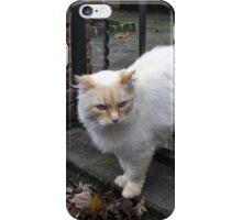 Fluffy Kitty iPhone Case/Skin
