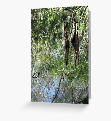 Yet Another Swamp Reflection Greeting Card
