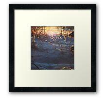 Magical winter forest Framed Print