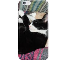 Snoozing Kittens iPhone Case/Skin