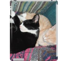 Snoozing Kittens iPad Case/Skin