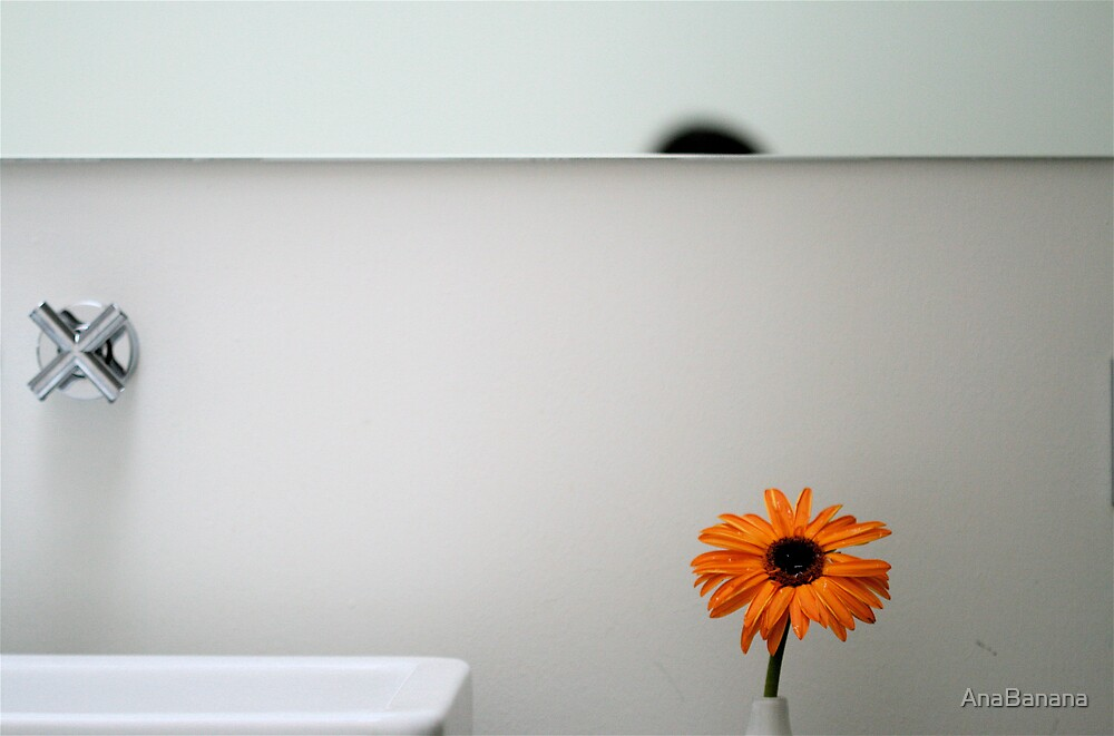 orange by AnaBanana