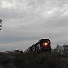 Train! by Tracy Faught
