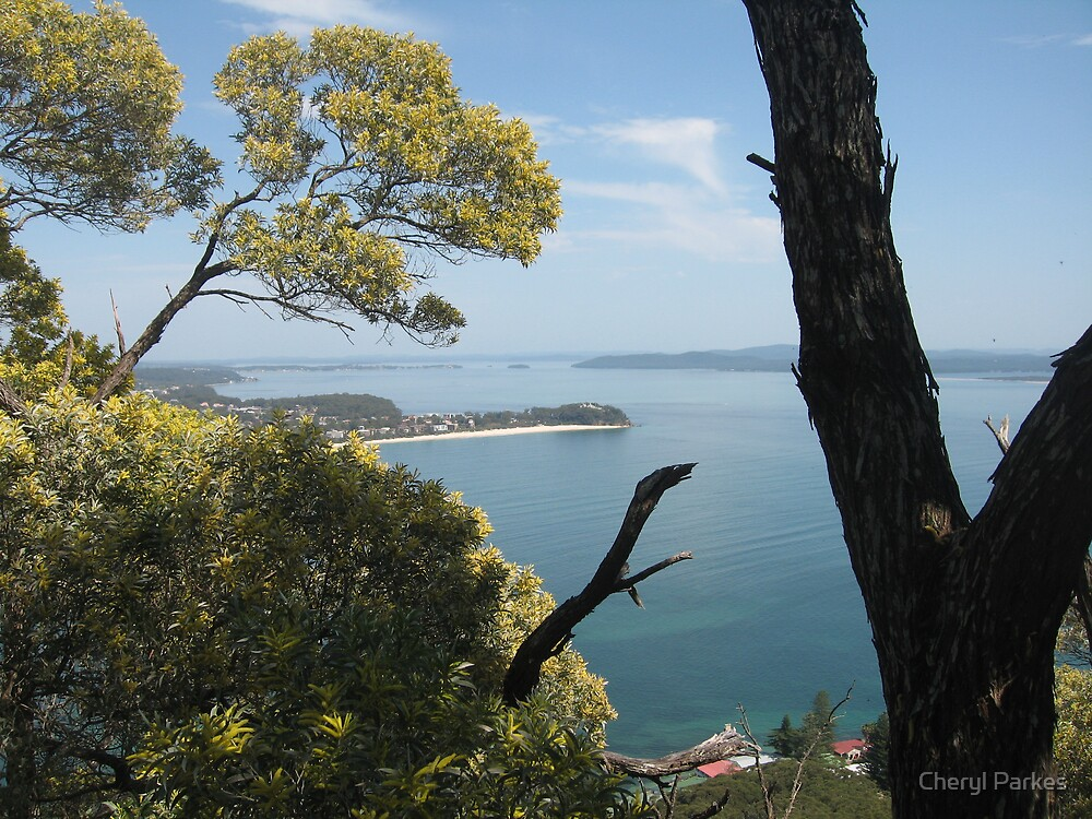 View from Mount Tomaree by Cheryl Parkes