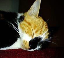 It sleep beloved ( for Chloe) by misiabe80