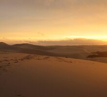 Sunset on the Dunes by Cheryl Parkes