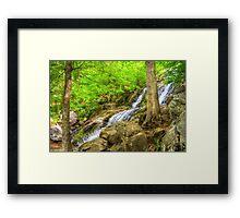 Between Dark Hollow Falls Framed Print