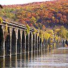 Rockville Bridge in fall 2008 by mstinak