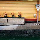 Parking Meter 3 by Kate Wilhelm