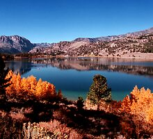 June Lake Loop by steveberlin