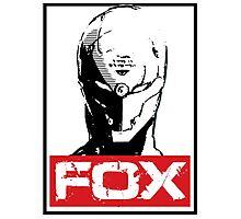 The Fox 02 Photographic Print