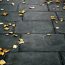 Stepping Stones by JenJenM