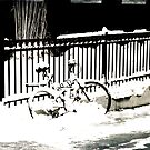 snowy bike by Kate Wilhelm