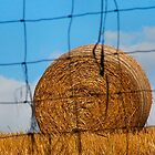 Roll of hay seen through a fence by OurKev