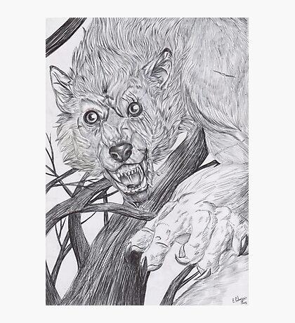 Werewolf 2 Photographic Print