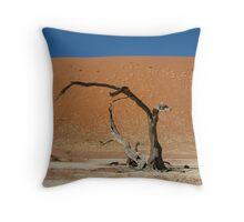 Deadvlei, Namib Desert, Namibia 2 Throw Pillow