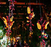 hanging garden by sdunaway