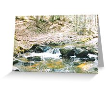 wooded waterfall Greeting Card