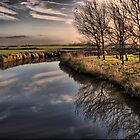 EVENING REFLECTION by Johan  Nijenhuis