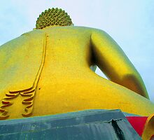 Back end of a Buddha by ennjae