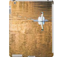 Golden Danube iPad Case/Skin
