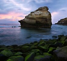 Bird Rock by jswolfphoto