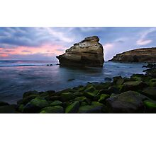 Bird Rock Photographic Print