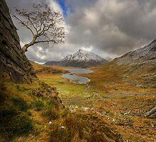 Llyn Idwal, Snowdonia National Park, North Wales by Owen Burke