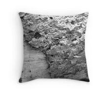 bark of a fallen tree Throw Pillow