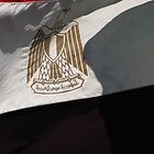 The Eagle of Saladin - the flag of Egypt by Dan Broome