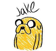 Adventure Time - Jake Photographic Print