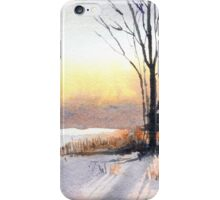 Last Rays iPhone Case/Skin