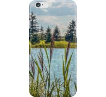 Pond's Edge iPhone Case/Skin