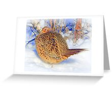 Ruffled feathers Greeting Card
