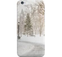 Victoria Park iPhone Case/Skin