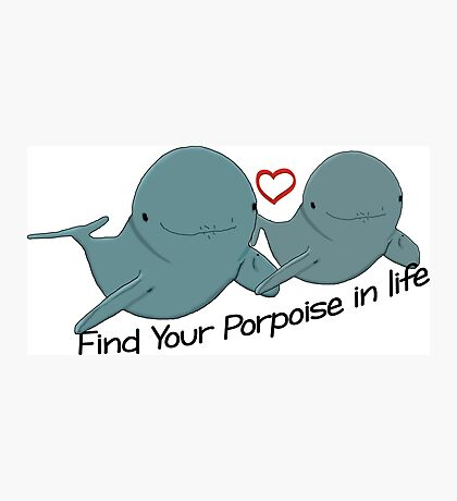 Find Your Porpoise in Life Photographic Print