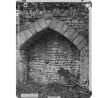 Hearthplace iPad Case/Skin