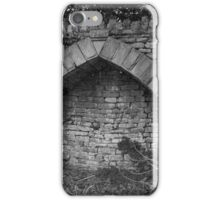 Hearthplace iPhone Case/Skin