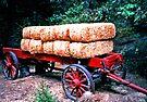 Hay! It's a Wagon! by Tamara Valjean
