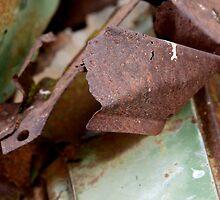 rust by Nicole M. Spaulding