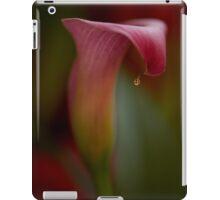 Lonely Teardrop iPad Case/Skin